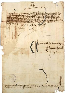 Las Epidemias de Peste en Cartagena Documentos y Transcripciones