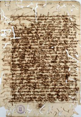 1523. Certificación expedida por el escribano del Concejo de Huéscar de que no hay peste en la ciudad.